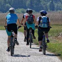 Charakterystyka roweru turystycznego
